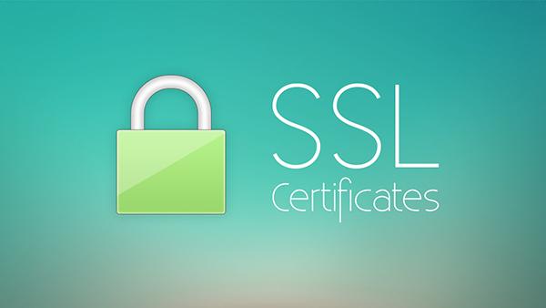 تاثیر نصب SSL روی سایت در سئو