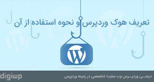 hook-in-wordpress-digiwp