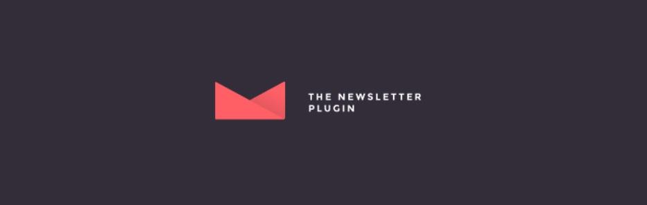 newsletter1-digiwp